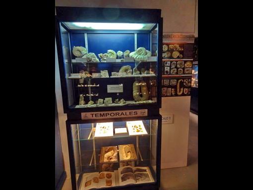 Exposiciones temporales 2015