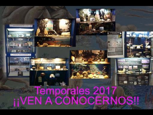Exposiciones temporales 2017